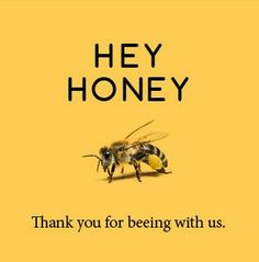 T T bees hey honey, thanks for bearing with ud I Love Bees, My Love, Buzz Bee, Bee Friendly, Bee Art, Bee Theme, Bee Happy, Save The Bees, Bees Knees