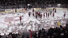 Hockey's Most Adorable Tradition Involves Over 25,000 Teddy Bears