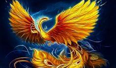 Phoenix   Phoénix - Respect et Harmonie