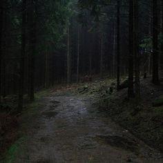 69 ideas for travel aesthetic dark Dark Green Aesthetic, Nature Aesthetic, Travel Aesthetic, Paradis Sombre, Twilight, Art Ancien, Slytherin Aesthetic, Dark Paradise, Dark Forest