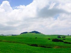 Beautiful Kohala Mountain Road