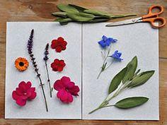 Gather Gifts from the Garden: Gardener's Supply
