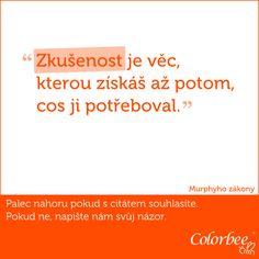 https://www.facebook.com/colorbee.eu