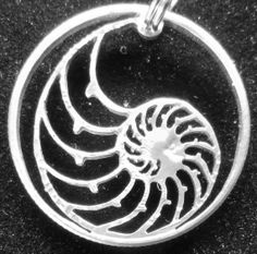 Nautilus Shell Hand Cut Coin Jewelry by bongobeads on Etsy, $39.95