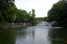 Inokashira Park, Kichijoji, Japan