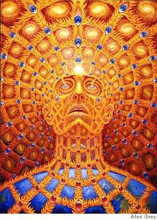 The Psychedelic Art of the Brilliant Alex Grey Psychedelic Art, Alex Grey Paintings, Art Gris, Alex Gray Art, Art Visionnaire, Psy Art, Visionary Art, New People, Sacred Geometry