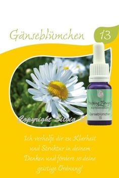 13 Gänseblümchen 10 ml Soap, Personal Care, Bottle, Flowers, Beauty, Cartomancy, Learning, Beleza, Self Care