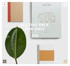 wloks.com gallery