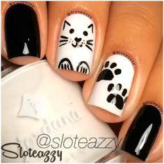 Kitty Cats <3