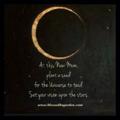 Moon Child: At this new moon plant a seed for the universe to tend. Set your vision on the stars Moon Moon, Moon Phases, Dark Moon, Moon Time, Moon Dust, Blue Moon, Moon Plant, New Moon Rituals, Moon Spells