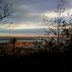 #Trieste from napoleonica at #sunset time...