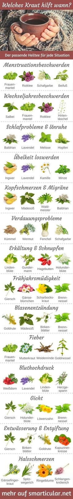 Which herb helps when? 13 Suffering and the right healing tea- Welches Kraut hilft wann? 13 Leiden und der passende Heiltee For almost every ailment, there is a healing tea that can provide you with relief without tablets and helps you to feel better. Herbal Remedies, Natural Remedies, Leiden, Bebidas Detox, Fitness Workouts, Good To Know, Feel Better, How To Stay Healthy, Natural Health