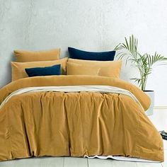 Gold Harmony Cotton Velvet Quilt Cover Set by Vintage Design. Get it now or find more Quilt Cover Sets at Temple & Webster. King Size Quilt Covers, Quilt Cover Sets, Gold Comforter, Temple, Velvet Duvet, Linens And More, Queen Size Quilt, Stylish Beds, Cotton Velvet