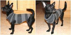Come realizzare un cappottino per cani di piccola taglia