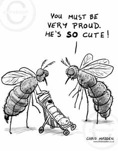 Cute baby insect cartoon