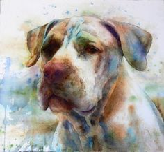 Kim Johnson WATERCOLOR | Paintings | Pinterest