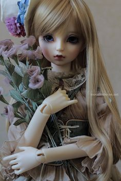 Welcome to Wonderland (Volks SDGr Lorina, Alice)