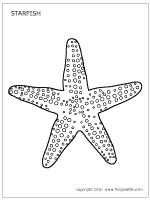 Starfish coloring page - FirstPallete.com printable patterns and craft ideas