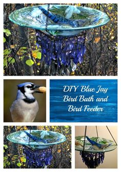 Upcycled Platter and hanging candle holder into Blue Jay bird bath or feeder. Trash to treasure. The blue crystals from the candle holder hang down and look like a Blue Jay tail. Makes a perfect addition to the yard or a beautiful gift. Hanging Bird Bath, Diy Bird Bath, Bird Bath Garden, Hanging Bird Feeders, Diy Bird Feeder, Garden Art, Indoor Garden, Garden Design, Unique Gardens
