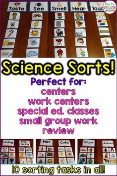 Students get to easily demonstrate their knowledge of science topics with these LOW PREP sorts. I use these for my task boxes, science centers and small group practice. They are perfect for my special education classroom. I love that all of my students can use them- even my non-verbal students.