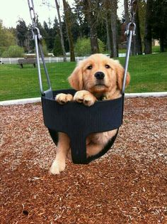 I need a push