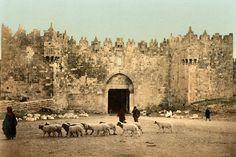 PicturesofJerusalem  jerusalemiloveyou.com  Damascus Road Gate