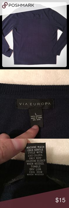 Navy Blue Sweater Color is navy even though some in pictures it looks black. Incredibly soft! In excellent used condition. Via Europa Sweaters V-Neck