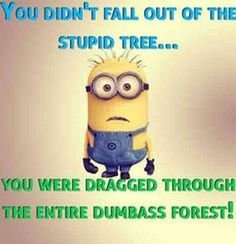 Super funny photos with captions humor minions quotes Ideas Funny Minion Memes, Minions Quotes, Funny Cartoons, Funny Jokes, Minion Humor, Funny Food, Minion Sayings, Funny Fails, Funny Pictures With Captions