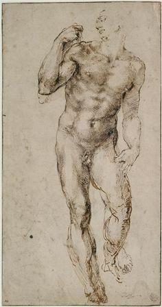 Michel-Ange | Homme nu, debout | Images d'Art