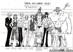 One Piece heights, character sheets, settei, Straw Hats, Sanji, Usopp, Roronoa Zolo / Roronoa Zoro, Nami, Monkey D. Luffy, Franky, TonyTony Chopper / Tony Tony Chopper, Nico Robin, Brain Walking Heavy Boost / Point
