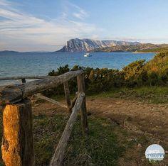 by http://ift.tt/1OJSkeg - Sardegna turismo by italylandscape.com #traveloffers #holiday | Spiaggia Capo Coda Cavallo in una foto di @tore.fonnesu complimenti Seguite anche voi @instagallura mettete il tag #instagallura e le più belle verranno condivise! #instagallura #gallura #sardegna #instasardegna #lanuovasardegna #igersardegna #followme #followforfollow #tagsforlike #capture #photo #photooftheday #picoftheday #beautiful #amazing #instagood #moment #nature #love #sardegnaofficial…