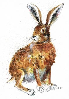 Mounted Limited Edition Giclee Print of 'Lord Armstrong' Hare JinaGelder Hare Illustration, Watercolor Illustration, Watercolour Painting, Art Calendar, Rabbit Art, Bunny Art, Lord, Watercolor Animals, Wildlife Art