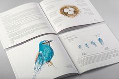 Prometey Bank Annual Report 2012 by Backbone Branding, via Behance