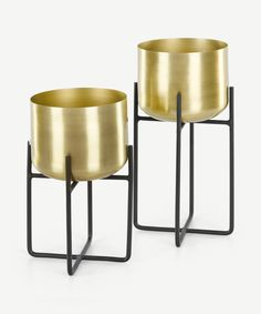 Copper Planters, Brass Planter, Large Planters, Indoor Planters, Cor Mulder, Shade Plants Container, Tall Plant Stands, Yellow Plants, Floor Plants