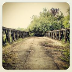 Abandoned Berkshire bridge