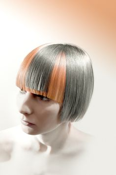 Austrian Hairdressing Award 2012 / Catergory Color by Stephan Friesinger...super wooooooowww!!