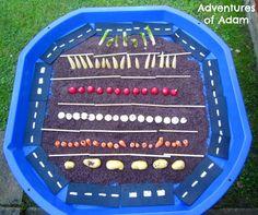 Adventures of Adam Vegetable harvest Tuff Spot