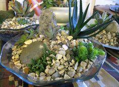 Glass bowl gardens