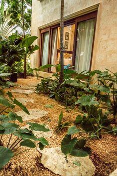 Rental Properties Barranca 21 | Caribbean Luxury Villas Luxury Villa Rentals, Rental Property, Villas, Caribbean, 21st, Ocean, Plants, Cottage, Villa