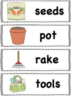 FREE Spring words perfect for the pocket chart.