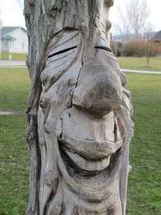 Trendy tree of life film book Nature Verte, Tree People, Tree Faces, Unique Trees, Tree Carving, Tree Sculpture, Tree Stump, Green Man, Land Art