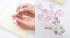 cherry blossom branch tutorial by DK Designs via Amy Atlas blog