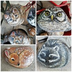 I was vacationing in Two Harbors, MN this past weekend and stopped in at their famous candy store ~ Great Lakes Candy Kitchen only to find these adorable painted rocks for sale! I had to take pictures and share with you guys because I know alot of you are talented with painting :-) The cats …