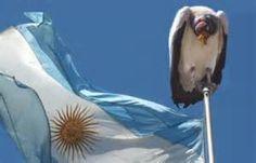 Fondos buitre: Argentina prepara propuesta de pago para presentar en ...
