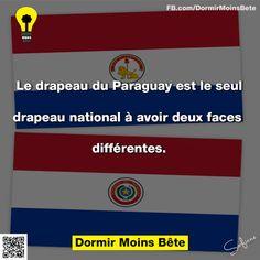 Le drapeau du Paraguay est le seul drapeau national à avoir deux faces différentes.
