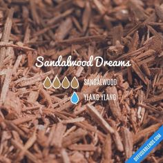 Sandalwood Dreams — Essential Oil Diffuser Blend