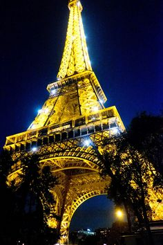 The city of lights: the Eiffel Tower