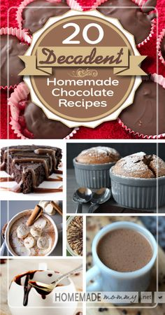 20 Decadent and Nutrient Dense Chocolate Recipes | www.homemademommy.net