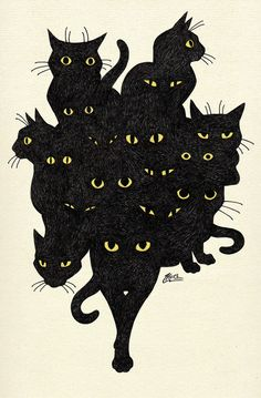 Ideas For Cats Black Illustration Kitty Crazy Cat Lady, Crazy Cats, I Love Cats, Cute Cats, Adorable Kittens, Black Cat Art, Black Cats, Black Cat Drawing, Drawing Art