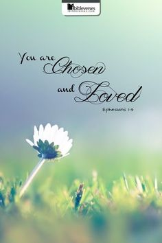 Bible Verses to Live By:you are chosen and loved Ephesians Bible Verses Quotes, Bible Scriptures, 5 Solas, Ephesians 1, Eph 1, Favorite Bible Verses, God Loves You, Jesus Loves, God Is Good
